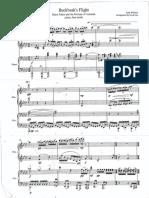 Buckbeak's Flight for Piano Duet