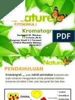 I Kromatografi.pptx