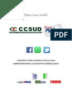 CURSO PARA EMPRENDEDORES Y PYMES.docx