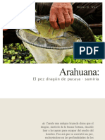 arahuana.pdf