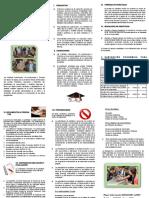 Tríptico Informativo (1)