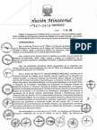 Directiva año 2017.pdf