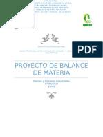 Proyecto Balance de Materia.docx