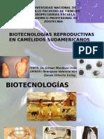 Biotecnologias Reproductivas