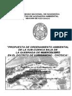Propuesta de Ordenamiento Ambiental de La Sub-cuenca Baja de La Quebrada de Huaycoloro en El Distrito de Lurigancho-chosica