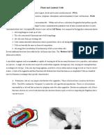 3_Notes_Cells.pdf