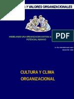 Cultura Organizacional 7