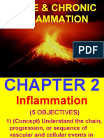 Ch2-Inflam