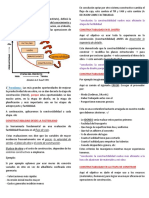 LECTURA N01