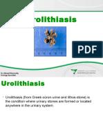 urolithiasisurinarystonesdiseasepresentation-140517114444-phpapp01