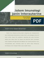 Sistem Imunologi Janin Interauterine
