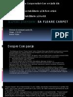 Analiza Stocurilor Si Cheltuielilor Entitatii SA Floare Carpet1