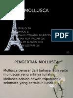 pptmollusca-151207045850-lva1-app6892.pptx