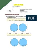Examen de Lengua 3º Primaria Santillana
