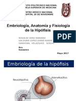 Fisiologi a Hipotalamo Hipofisis