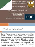 Inulinasas.pptx