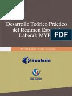 LIBRO REGIMEN ESPECIAL LABORAL MYPE VERA PAREDES.pdf