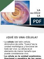 LA CELULA.pptx