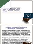 Exposicion Logica Juridica