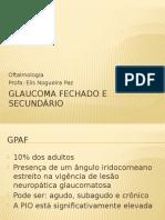 Glaucoma Fechado e Secundário