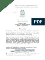 Informe Modelación Con HEC-RAS Del Canal