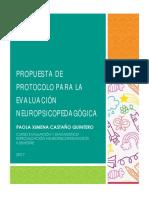 Propuesta de Protocolo Para La Evaluación Neuropsicopedagógica