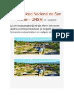 Universidad Nacional de San Martín