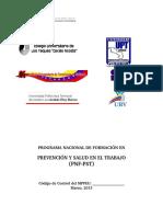 Diseño Curricular Del PNF en Prevención y Salud en El Trabajo.pdf