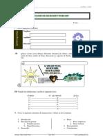 Examén Word 2007 - 2