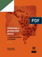 programas de proteccion brasil.pdf