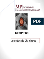 MEDIASTINO (1)