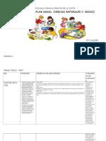 Plan anual de Ciencias naturales.docx