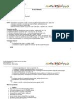 0_96_proiect.doc