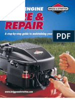 Briggs and Stratton Small Engine Care