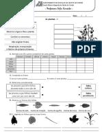14. Plantas 1.pdf