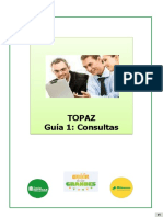 Topaz Guía 1