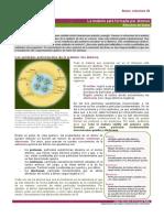 Curso 0 Quimica PDF
