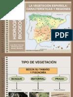 regiones-biogeogrficas-espanolas