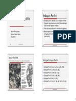 GBG-8 Sistem Endapan Porfiri.pdf