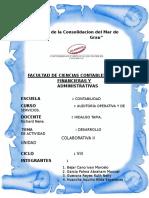 Instrumentos Normativos Trabajo Grupal Auditoria Operativa