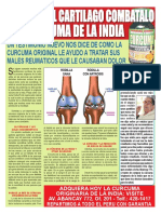 CURCUMA junio vale.pdf