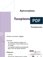 13.Apicomplexa,Toxoplasma
