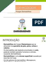 Atlas de Micologia.pdf