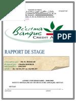 Rapport de Stage