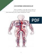 01 - Sistema Cardiologico - 20