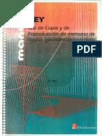 MANUAL Test-de-Rey.pdf