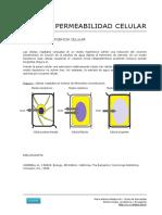 66_Plasmolisis_y_turgescencia.pdf