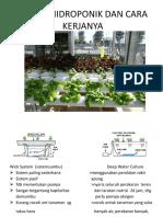 Sistem Fertigasi, PENGATURAN NUTRISI, MODEL Hidroponik, Kul12 (1)
