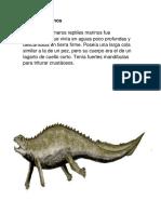 Animales Prehistoricos Marinos