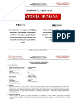 Jvc-silabo Anatomia. Humana 2017-i Enfermeria